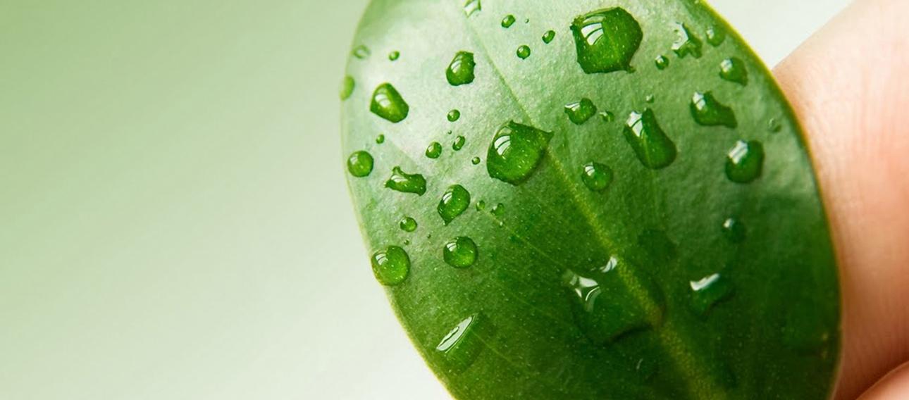 Alkon é certificada em sistemas de gestão ambiental ISO 14001